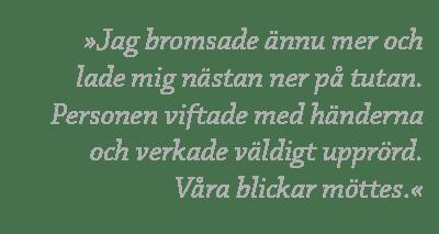 citat_alldeles_for_nara